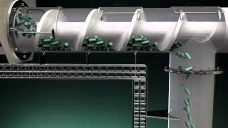 Dosing And Conveying Screw