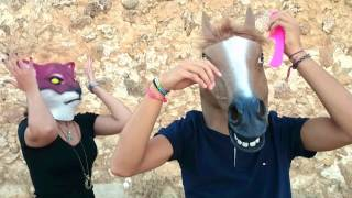 preview picture of video 'My Horsefriend'