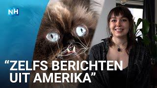 """Yohji de kat blijkt internetsensatie: """"Al 80.000 volgers op Instagram"""""""