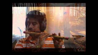 Magical melody of AR Rahman Anjali cover on the Flute