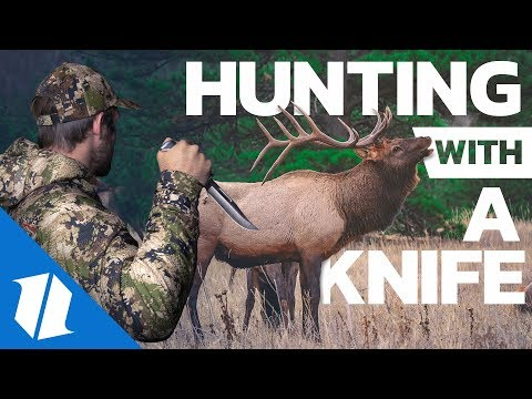 The Best Hunting Knives? | Knife Banter Ep. 67