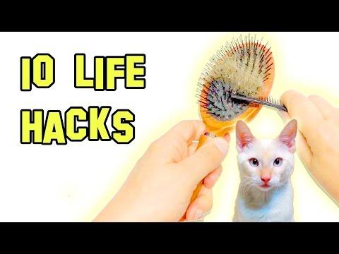 10 Life Hacks That Make Life Easier