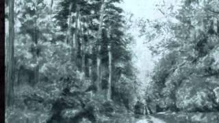 Schubert par  David  Fray Allegretto D915
