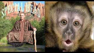 Monkey Boo Reacts To a Levitating Monk
