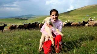 ARDAHAN Türküleri Festivali Göle Hanak Damal çıldır Posof Hoçvan @ MEHMET ALİ ARSLAN Videos
