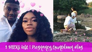 MATERNITY PICS & BROKEN WINDOWS | 9WKS LEFT | PREGNANCY COUNTDOWN