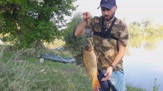 Карп как ловить на пруду летом