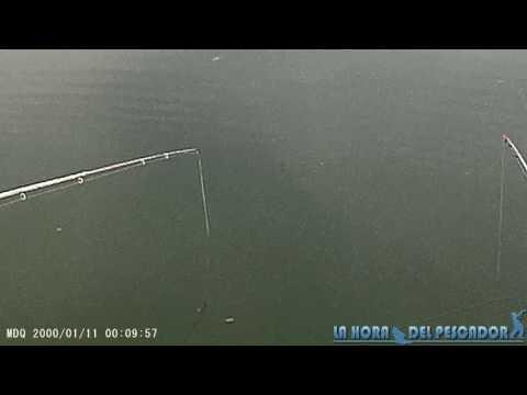 Técnica de arrastre con caña en pesca