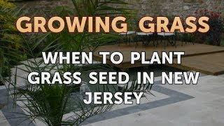 When to Plant Grass Seed in New Jersey