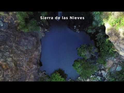 Descubre la Sierra de las Nieves a través del sendero Charco de la Virgen
