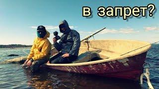 Рыбалка в чулково финский залив