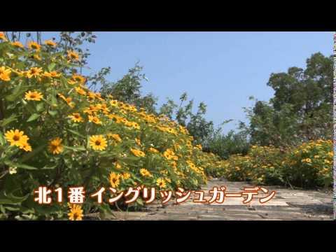 十月の塩河動画