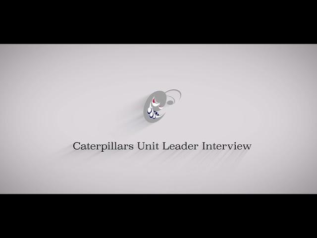 アメフト社会人チームの電通キャタピラーズの映像コンテンツ「キャタポジション紹介⑧ QB」