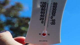 The Fight Against Vehicular Heatstroke