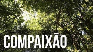 A COMPAIXÃO VAI MUDAR A SUA VIDA! - CRISTIAN DAMBRÓS