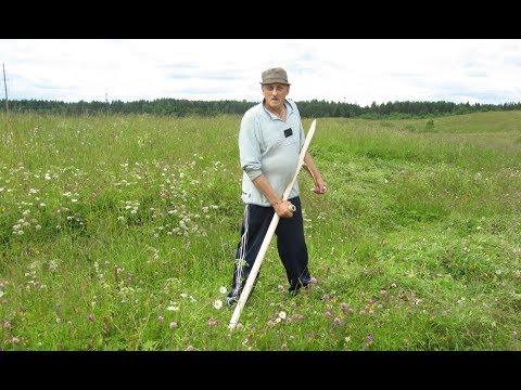 Первый покос травы на сено.  Как правильно косить траву ручной косой