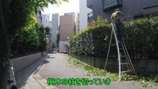 https://www.youtube.com/watch?v=T7AgJac_94U