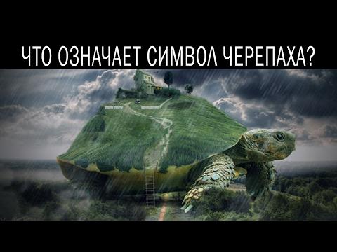 Окончание войны в украине астрологи