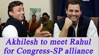 UP Election 2017  Akhilesh Yadav To Meet Rahul Gandhi For CongSP Alliance  Oneindia News