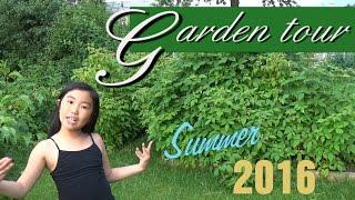 Backyard Organic Fruit Garden Tour - Summer 2016