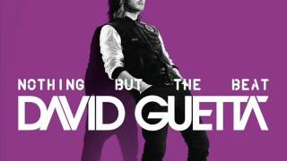 David Guetta & Afrojack - Lunar (Party Mix) Nothing but the beat