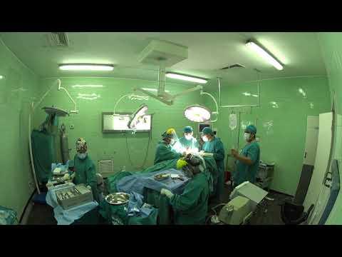 Tratamentul denas al articulațiilor