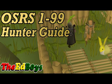mp4 Training Hunter Osrs, download Training Hunter Osrs video klip Training Hunter Osrs