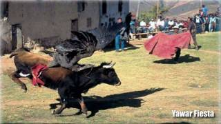 Luis Ayvar   Waranguituy Subtitulado (quechua)