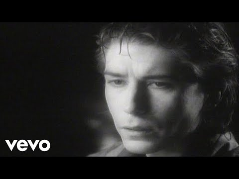 The Psychedelic Furs - The Ghost In You video