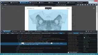 Комплексный видеокурс по ZennoPoster часть 2. Урок № 13 (VK 4).mp4