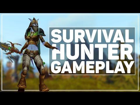 Hunter/melee все видео по тэгу на igrovoetv online