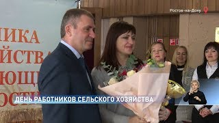 Новости-на-Дону в 15.00 от 16 ноября 2018