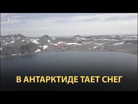 20 градусов жары в Антарктике