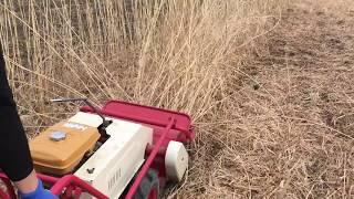 ハンマーナイフ機での草刈り作業 浜松市 南区 えにしプランニング