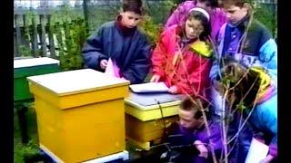Cursus bijenhouden 1992 – Peter Ravesteijn