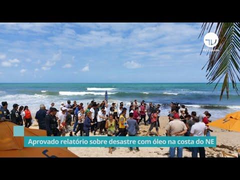 Aprovado relatório parcial sobre desastre com óleo na costa do NE - 10/12/19