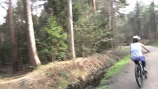 preview picture of video 'Cycling In Delamere Forest'