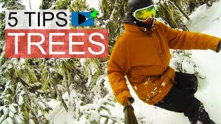 #31 Snowboard intermediate – Tips for snowboarding between trees