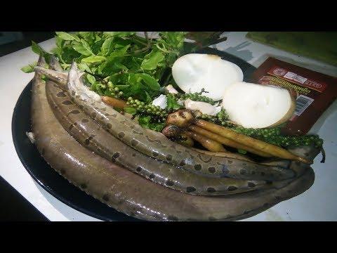 Video Spicy Stir Fish Laos Food Recipes