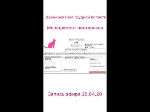 Дренирование грудной полости Эфир Inst 25 04 20. Пиоторакс/Inst Talks Thoracic Drainage, Pyothorax