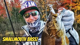 Megabass Orochi XX Rods - Free video search site - Findclip Net