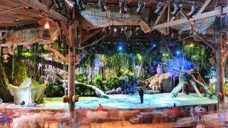 The Tarzan Encounter - Tarzan la Rencontre - Disneyland Paris