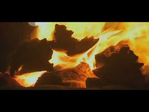 timaa6's Video 164357975816 T9pA8vREeyI
