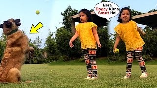 Ziva Dhoni Cute Video Playing With New Dog Gifted By MS Dhoni During Lock Down | Last Page Readers