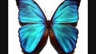 DDR Butterfly [FULL] with lyrics