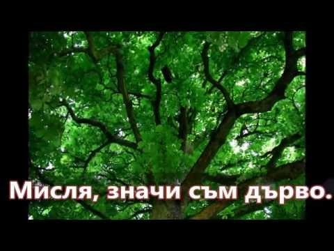 Павол Яник: Дърво в първо лице... (1991) Bulgarian 1