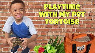 My Pet Tortoise | Fun Pet Video | Tortoise Eating | Playtime With My Tortoise