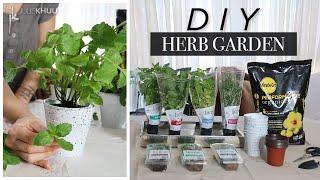 DIY HERB GARDEN | Indoor or Outdoor Herb Garden | Julie Khuu