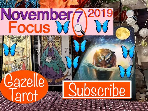 November 7 Daily Tarot Reading 🔍Focus✅ #tarot #daily #november