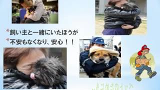 ペットの防災対策
